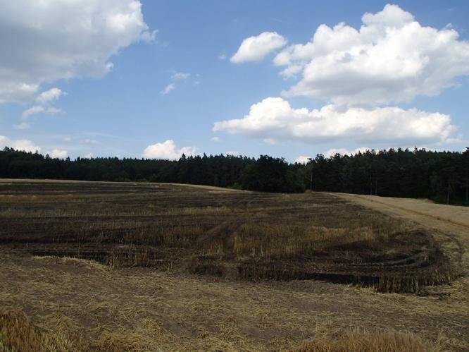 Práce v zemědělství vysočina