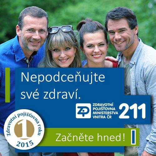 Pojišťovna 211